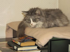 Mozart, with books.