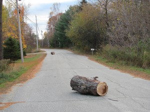 . . .there are TWO logs in the road!