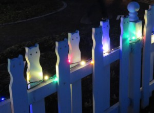 Cat fence dec 19 2015